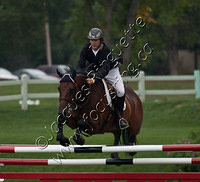 Show Jumping Tournament - 2011