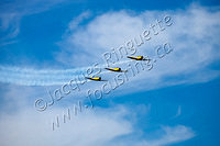 Canadian Harvard Aerobatic team (4)