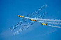 Canadian Harvard Aerobatic team (5)