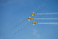 Canadian Harvard Aerobatic team (6)